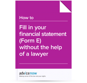 How to fill in Form E without the help of a lawyer