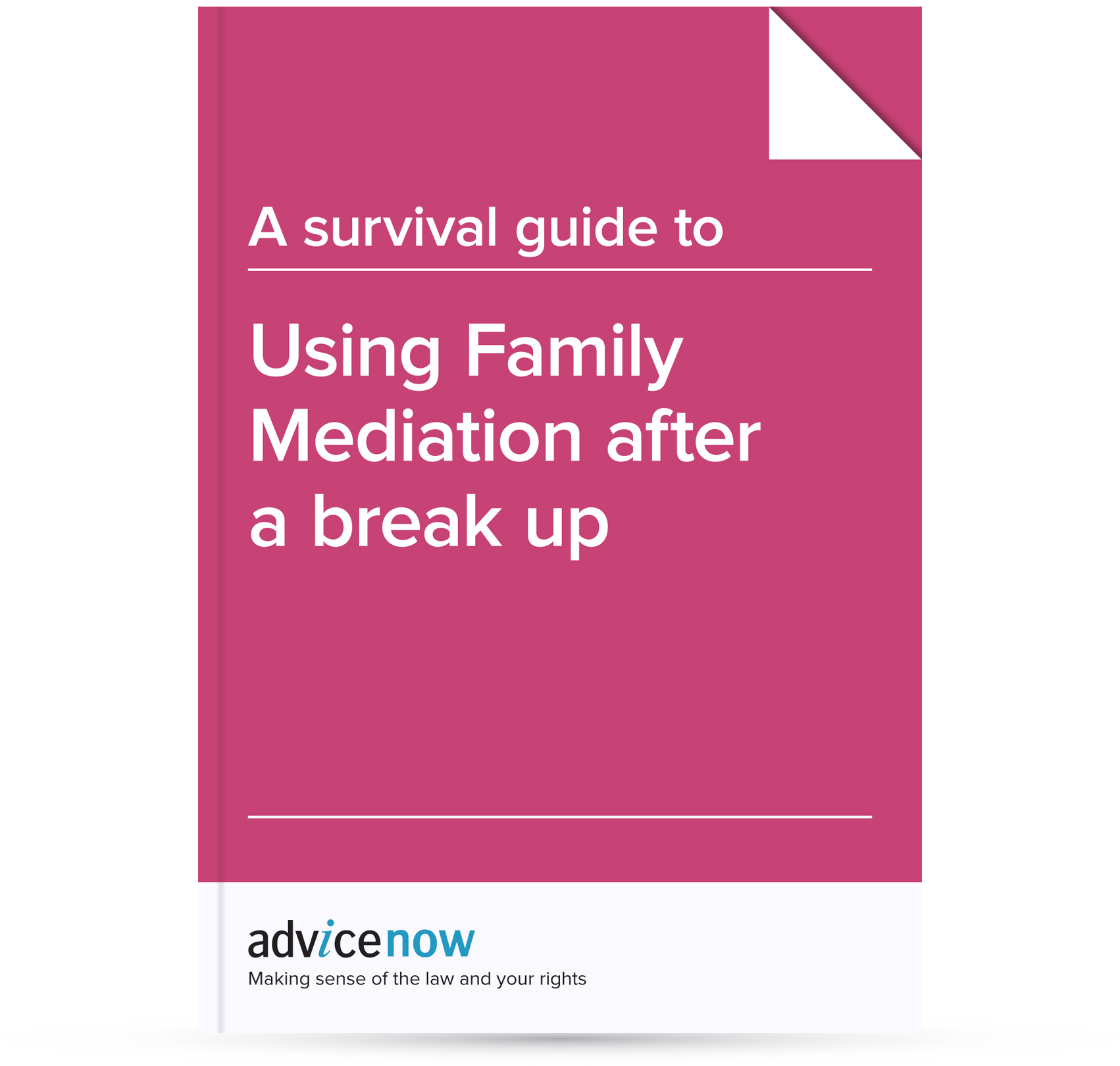 A Survival Guide To Using Family Mediation After A Break Up Advicenow